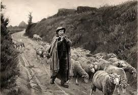 Sheep Images: Shepherd with Pipe and Sheep